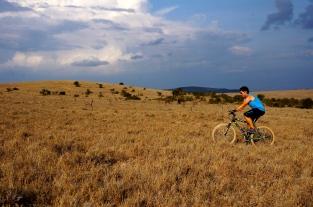 Mountain biking at Borana Lodge