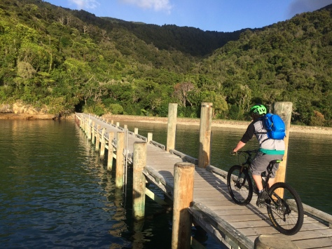 It begins at Ship Cove | Queen Charlotte Track